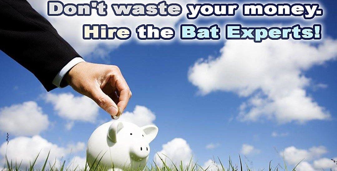 Hire the Bat Experts