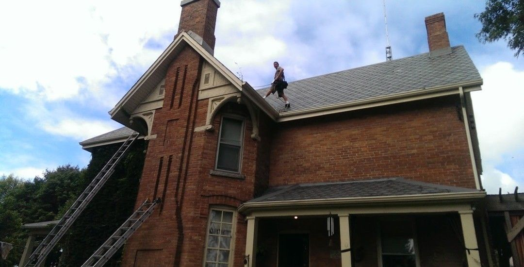 Bat Removal of Century old Home.